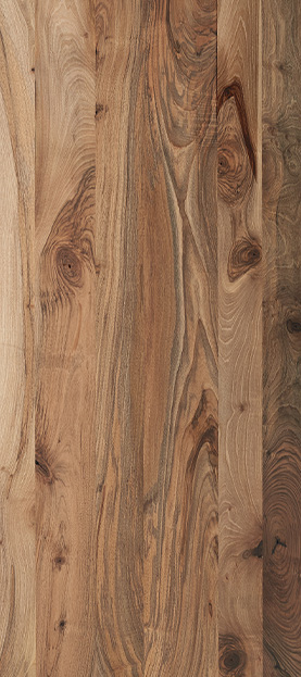 Iberian walnut species