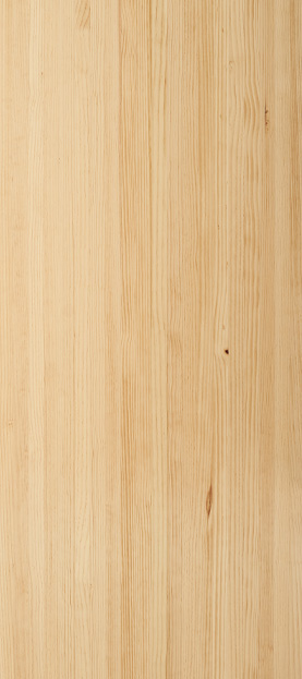 Radiata pine species