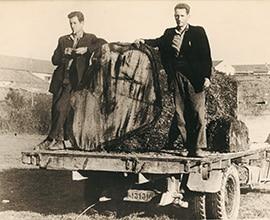 1959Se inicia la actividad de aserrado
